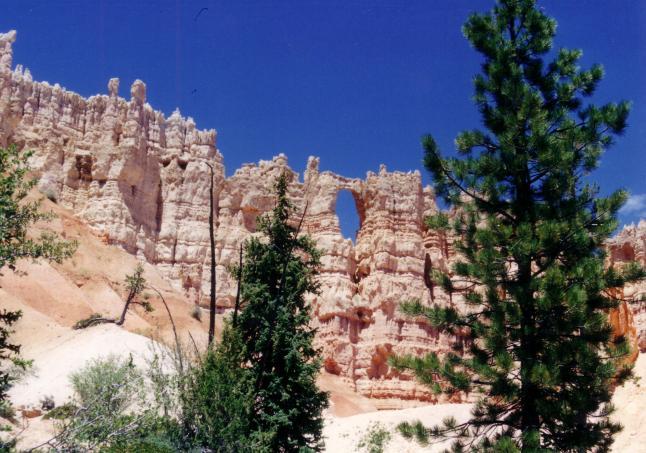 1993_Arizona0003